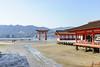 Miyajima, Japan (April 2016) (H_E_L) Tags: hel japan miyajima torii greattorii floatingtorii itsukushima temple shrine