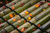 Kyoto, Japan (Aicbon) Tags: verde arashiyama bamboo bambooforest bambu bosc bosque momiju leave leaves hojas fulles autum tardor green red rojo orange naranja otoño detail lines kyoto kioto japon japo japan nipon canon eos 500d 50mm 14