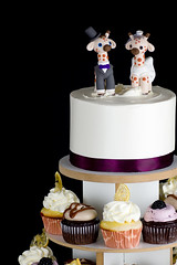 Giraffe Wedding Cake (brian_barney9021) Tags: wedding cake cupcakes cup cakes dessert food black background nikon d7200 lacrosse wi wisconsin bakery