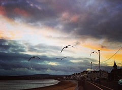 A snap on my phone when at Exmouth (mirandagraceknight) Tags: colour seafront seaside cloudporn dusk sunset clouds