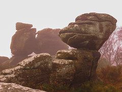 Brimham Rocks in Fog (Sue Baker 24/7) Tags: yorkshire outdoors rockformations geology brimhamrocks