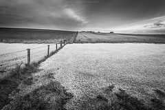 Wintery field (Premysl Fojtu) Tags: winter snow frozen field fence landscape monochrome blackandwhite bw canon 5dmkii ef1740 wideangle fullframe orkney tankerness mainland island scotland