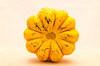 winter squash (sure2talk) Tags: wintersquash yellow nikond7000 lensbaby lensbabycomposerpro sweet50optic backlit flash speedlight sb900 offcamera diffused softbox 117picturesin20173boldcolour