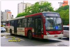 7 6797 Gatusa (Crisbus Brasil) Tags: crisbusbrasil ônibus bus buses gatusa caio sãopaulo