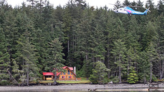 60703001.jpg (QCL Shooter) Tags: firstclassfishing queencharlottelodge fishingfirstclass adventure haidagwaii charlottehouse helijet qcl
