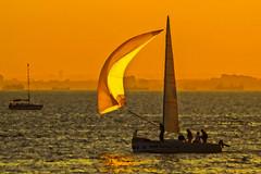Pupa yelken giderken ... (s_gulfidan) Tags: sail sunset sea water sailing 200faves