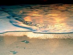 """""""Il canto del mare termina sulla riva o nei cuori di chi l'ascolta?""""♡ * (Kahlil Gibran) (TRICOR 46) Tags: mare schiuma riflesso battigia risacca spiaggia sabbia golden"""