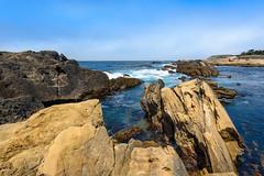 Point Lobos near Carmel, CA (Ash Bowie) Tags: nature landscape nikon d750 1424mm