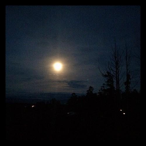 169/365 • milky almost-full moon over #Kinglake • #169_2015 #moon #friends #night #sky #sleepover #Winter2015