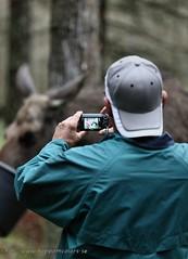 20150709080268 (koppomcolors) Tags: park sweden moose sverige scandinavia värmland älg värmlands koppomcolors