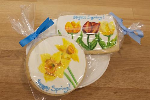 Spring Painted Decorated Sugar Cookies