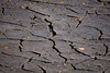 Cracked (d.cobb56) Tags: crack cracked crackedearth dry drought lines dryspell earth landscape earthlandscape desolate texture textures patterns
