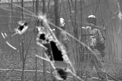 Brand in einem leerstehenden Gebäude in Berlin-Mitte (Agentur snapshot-photography) Tags: berlin europa berufe berufsalltag arbeitsalltag arbeitswelten berufswelten feuerwehr fireandrescue firedepartment berlinerfeuerwehr feuerwehreinsatz einsatz mission gebäudebrand qualm rauch structurefire brandbekämpfung feuerwehrfrau firefighter feuerwehrleute feuerwehrmann fireman firemen personen effekt reflexion reflexionseffekt spiegelung atemschutz respiratoryprotection atemschutzgerät symbolfoto 012200 symbolbild symbolfotos deutschland deu
