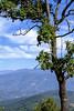 Kohima View ... (Bijanfotografy) Tags: fujifilm fuji fujixt2 xtrans nagaland kohima india landscape nature view
