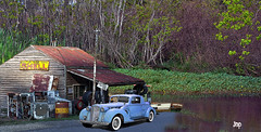 Packard at The Shell (crimsontideguy) Tags: packardautomobiles automobiles florida panamacitybeach photoshop art vintage vintagecars vintageautos servicestations swamps nikon