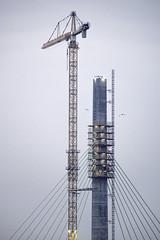 Mersey Gateway photographs January 2017 (Stuart Hough) Tags: merseygateway widnes runcorn construction bridge