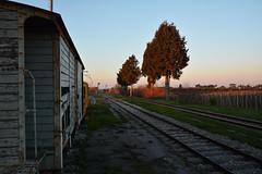Verrà un altro treno - Will come another train. (sinetempore) Tags: verràunaltrotreno willcomeanothertrain teno train vecchiotreno oldtrain trenoabbandonato abandonedtrain binari rails campagna