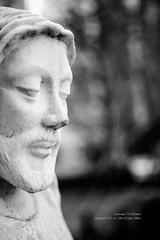 S17_2858 (Daegeon Shin) Tags: nikon d4 nikkor 55mm 55mmf28 portait retrato bokeh dof bw statue estatua 니콘 초상 보케 빛망울 예수상