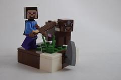 Minecraft - Cow Tipper (TheRoyalBrick) Tags: minecraft foitsop vignette