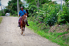 Por los caminos de Chucás (Roberto Segura) Tags: horse rider small town costarica atenas chucas chucaz riding backriding pueblo pentax ks2