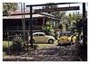 17_02_05_150p (2) (Quito 239) Tags: volkswagen 1971volkswagen 1971volkswagensuperbeetle superbeetleconvertible vw bug vocho escarabajo puertorico haciendaigualdad volky