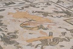 Edificio del mosaico de Neptuno en Itálica (Emilio__) Tags: conjuntoarqueológicodeitálica italica ruinasdeitalica ruinas sevilla santiponce febrerode2017 febrero 2017 ciudad romana edificiodelmosaicodeneptuno mosaico mosaicos