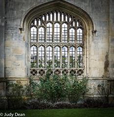 King's college, Cambridge (judy dean) Tags: judydean 2017 sonya6000 cambridge kings college wall windows roses through stone tracery carvings