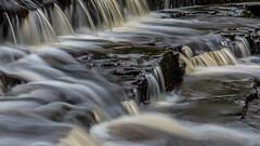 2017-01-17 Rivelin-7412.jpg (Elf Call) Tags: nikon rivelin river yorkshire water stream 18105 sheffield steppingstones waterfall d7200 blurred