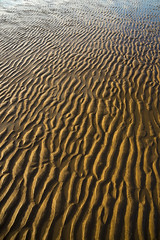 Reighton sands, Filey Bay, North Yorkshire (Keartona) Tags: filey bay northyorkshire yorkshire england britain coast coastline beach reighton sands sand morning sunny closeup abstract pattern patterns ripples rippled water