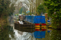 A New Take On An Old Favourite (williamrandle) Tags: dardyend netherton dudley westmidlands uk england winter 2017 nethertoncanal dudleycanal canal waterways water reflections withymoorisland narrowboat colourful colour green trees plants shrubs outdoor landscape nikon d7100 nikon80400mmgf4556edvr boat