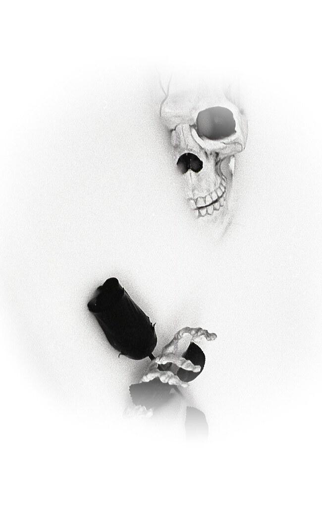 c9c522251e5 Valentines Day Wishes (MTF Reflections) Tags  skeleton black rose valentine  day wish milk