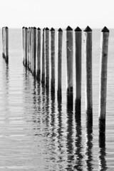 Gaps (brucetopher) Tags: pilings pier slip slips boatslip water ocean sea bay tidal river harbor vacant reflection reflect wet pole poles rod rods black white blackandwhite bw blackwhite monochrome contrast tone tones