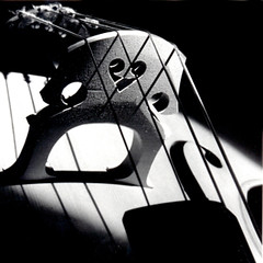 Afternoon Sun in G Flat (Sunset|Sealy) Tags: music blackwhite doublebass musicalinstruments utatafeature goldenheartaward