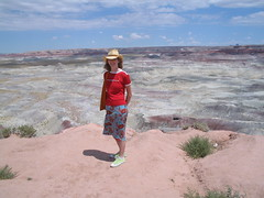 Little Painted Desert (Jennilie) Tags: lpdesert
