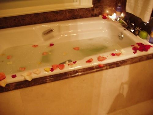 The Hermitage Bath