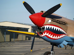 "P-40E • <a style=""font-size:0.8em;"" href=""http://www.flickr.com/photos/37063589@N00/213317904/"" target=""_blank"">View on Flickr</a>"