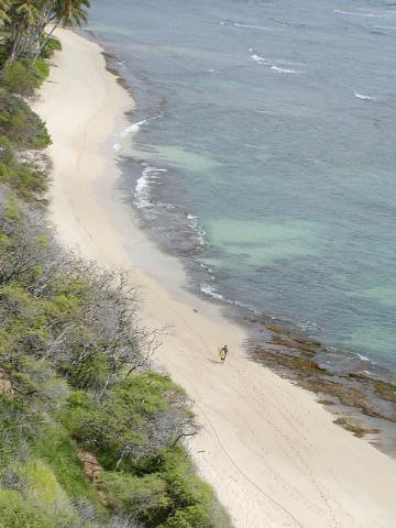 Diamond Head beach #006