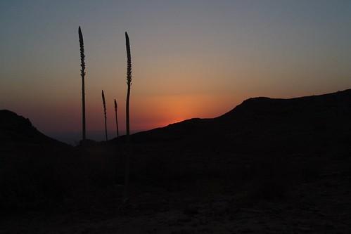 Sunset, Petra