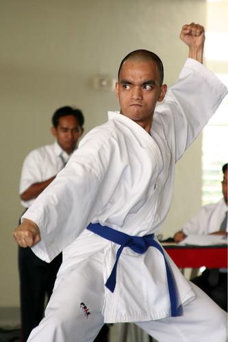 Karate pose, Expo Calidad de Vida