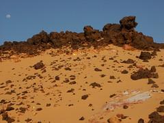 PICT1562 (David Haberlah) Tags: howar sudan wadihowar desert geology gossan ironcap