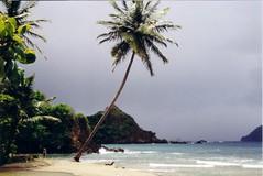 Ön Tobago