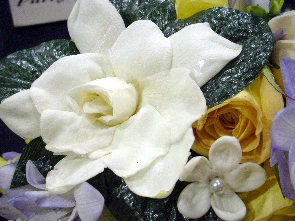 gardenias & stephanotis