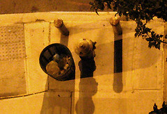 Insomnia 9 Img_0571 (Lanterna) Tags: street city night hydrant garbage cityscape nightscape sidewalk insomnia streetscape fireplug stanchion lanterna sleepless canonpowershota75
