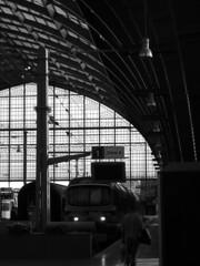 (ElseKramer) Tags: bw 15fav white black station century train belgium steel central structure antwerpen commuters 19th centraal elsekramer