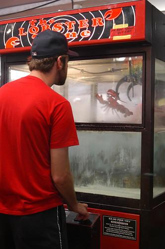 máquina de atrapar langostas vivas