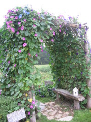 Garden Arbor (The Mom) Tags: morning flowers sign garden birdhouse september arbor morningglories gardenstatuary