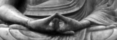 Bhuddha detail of hands
