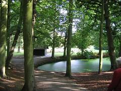 Landgoed Clingendael (HannyB) Tags: park trees green nature pond bomen groen denhaag thehague vijver clingendael