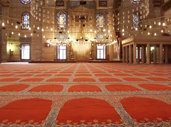 Magic carpet ride (rogiro) Tags: freeassociation carpet muslim islam istanbul mosque rug sultan pillars sinan magnificent masjid sleymaniye islamic camii  mimar sleyman mimarsinan  yellowhighlights