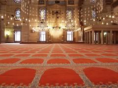 Magic carpet ride (rogiro) Tags: freeassociation carpet muslim islam istanbul mosque rug sultan pillars sinan magnificent masjid süleymaniye islamic camii مسجد mimar süleyman mimarsinan سلیمانیه yellowhighlights